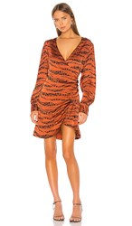 Anine Bing Penelope Dress In Rust. Zebra