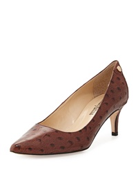 Neiman Marcus Stroll Low Heel Point Toe Pump Brown