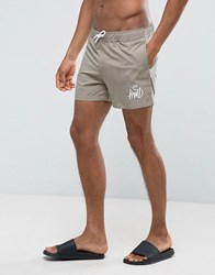 Kings Will Dream Swim Shorts In Stone Stone