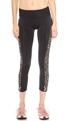 Blue Life Fit Lasercut Leggings Black