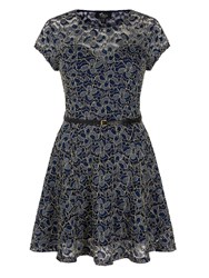 Mela Loves London Shimmer Lace Skater Dress Navy