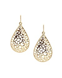 Sparkling Sage Cutout Teardrop Earrings Compare At 75 Gold