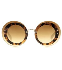 Miu Miu Reveal Sunglasses Brown