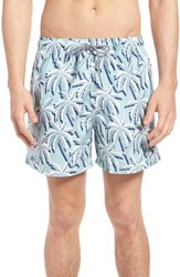 Ted Baker London Hoppah Palm Print Swim Shorts Mint