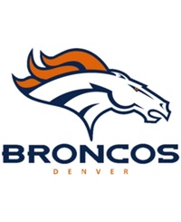 Rico Industries Denver Broncos Static Cling Decal Team Color
