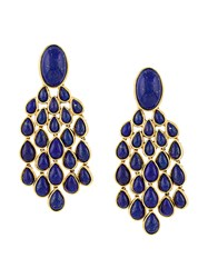 Aurelie Bidermann Lapis Lazuli Drop Earrings Metallic