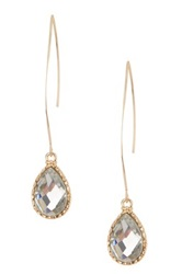 Zsa Zsa Jewels Lilly Crystal Teardrop Drop Long Hook Earrings No Color
