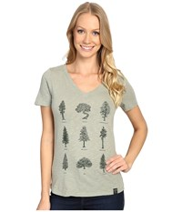 United By Blue Evergreen Sage Women's Clothing