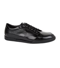 Stefano Ricci Leather Sneakers Black