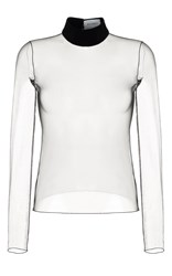 Rasario Long Sleeve Sheer Top With Velvet Accent Black