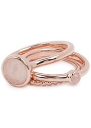 Lola Rose Nerio Rose Gold Tone Rings