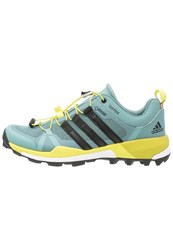 Adidas Performance Terrex Boost Gtx Walking Shoes Vapour Steel Core Black Ice Green Light Green