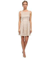 Alejandra Sky Zig Zag Lace Skater Dress Gold Ivory Women's Dress