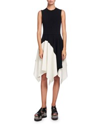 Proenza Schouler Sleeveless Colorblock Asymmetric Hem Dress Multi Black White