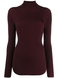 Pinko Ribbed Roll Neck Sweater Brown