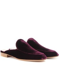 Gianvito Rossi Exclusive To Mytheresa.Com Palau Velvet Slippers Purple