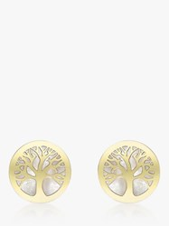Ibb 9Ct Gold Mother Of Pearl Tree Of Life Round Stud Earrings Gold
