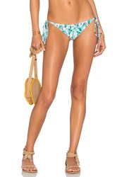 Beach Riot X Revolve X A Bikini A Day Anita Bottom Green
