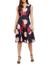 Phase Eight Azalia Elba Floral Fit And Flare Dress Navy Multi