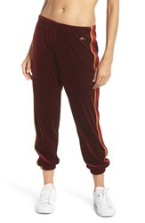 Aviator Nation Classic Velvet Sweatpants Wine
