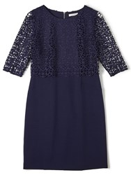 Precis Petite Jeff Banks Floating Lace Indig Navy