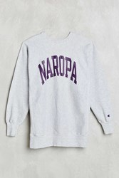 Urban Renewal Vintage Champion Naropa Sweatshirt Assorted