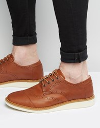 Toms Leather Brogue Shoes Brown