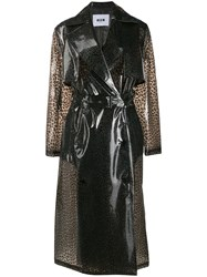 Msgm Leopard Print Trench Coat Grey
