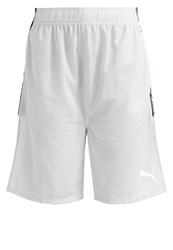 Puma Sports Shorts Glacier Gray Grey