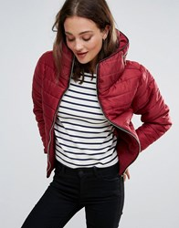 Daisy Street Padded Jacket Wine Red