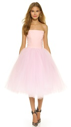 Loyd Ford Strapless Ballet Dress Pale Pink