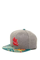 American Needle St. Louis Cardinals Palm Baseball Cap Gray