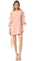Alexis Sofie Dress Dusty Rose