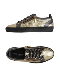 Carlo Pazolini Low Tops And Trainers Gold