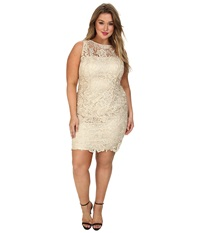 Adrianna Papell Plus Size Illusion Neck Lace Dress Champagne Women's Dress Gold