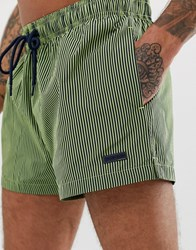 Calvin Klein Patch Logo Stripe Swim Shorts In Green