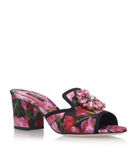 Dolce And Gabbana Bianca Printed Jewel Slides 60 Female Pink