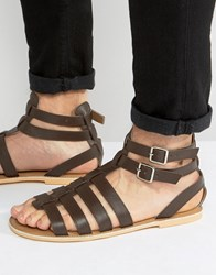 Frank Wright Gladiator Sandals In Brown Leather Brown