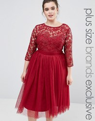 Little Mistress Plus Short Sleeve Lace Bodice Midi Dress With Tulle Skirt Burgundy Red