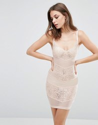Wolf And Whistle Lace Mesh Dress Blush Blush Pink