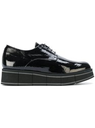 Paloma Barcelo Wedged Oxford Shoes Women Calf Leather Leather Rubber 37 Black