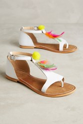 Anthropologie Coral Blue Feather Sandals White