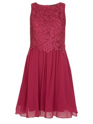Dorothy Perkins Showcase Lace Prom Dress Pink