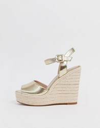Aldo Ybelani Platform Heeled Sandals In Gold Gold