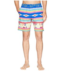 Toes On The Nose Serape Volley Shorts Multi