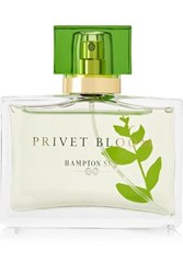 Hampton Sun Privet Bloom Eau De Parfum Colorless
