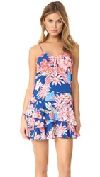 Cooper And Ella Jessica Ruffle Dress Floral Multi