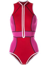 Duskii Temptation Swimsuit Pink