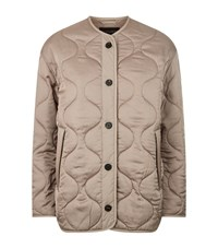 Allsaints Hayes Quilted Jacket Female Neutral