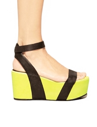 Pixie Market Back To The Future Wedges